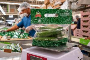 cucumbers packaging